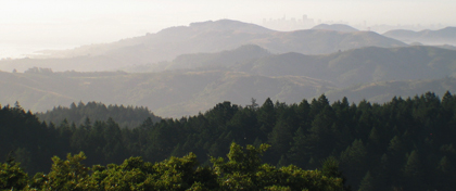 Mount Tamalpais SP