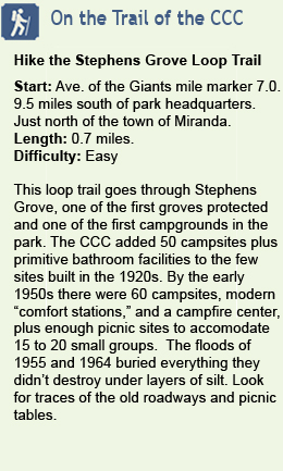 Hike the Stephens Grove Trail