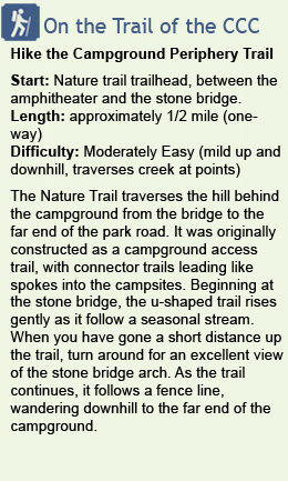 Description of hike on Idyllwild campground nature trail