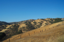 Summer hills at Pacheco SP