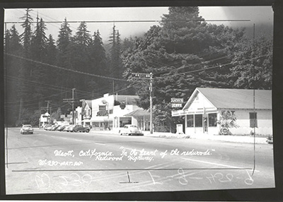 Weott, looking south on Avenue of the Giants, 1950
