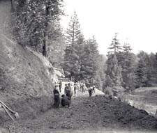 Building the road at Mendocino Woodlands