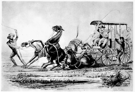 Butterfield Overland Mail Celerity Wagon 1858 Drawing, courtesy of Gerald Ahnert
