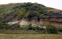 Estuary of primarily Pleistocene geologic age