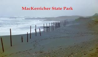 MacKerricher SP is the most northern of California's Underwater Parks