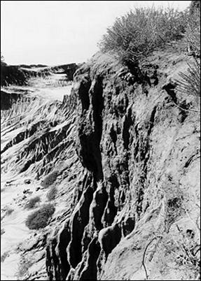 Image of eroding bluff