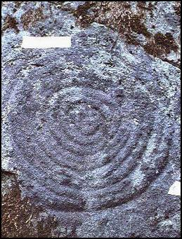 A concentric circle at CA-MEN-753 (Feliz Creek).