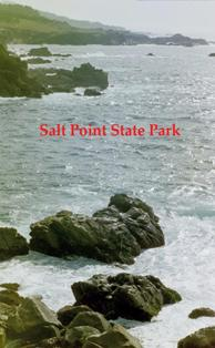 Salt Point SP has a number of prehistoric site types including Kashia Pomo settlements