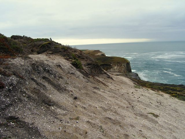 Sand Hill Bluff became part of the California State Park system in May 2005.