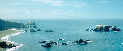The Sonoma Coast State Beach underwater park area runs the entire length of park paralleling the coastline at the prescribed 1,000 feet from the shoreline