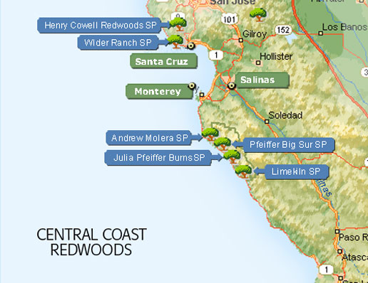 Central Redwoods Map