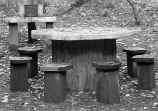 CCC built picnic table at Big Basin in 1935