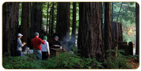 Little Basin campground is located within Big Basin Redwoods State Park.