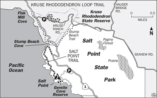 Kruse Rhododendron Loop Trail Map