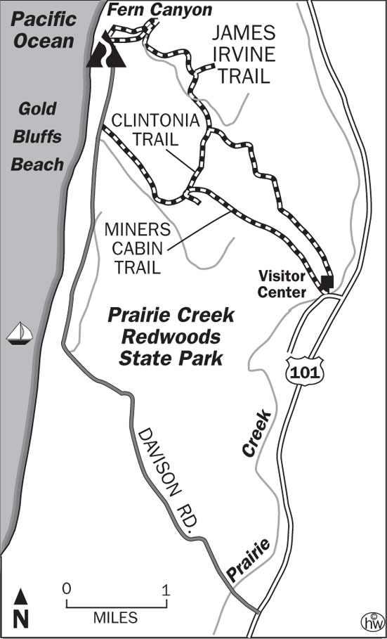 Fern Canyon, James Irvine, Clintonia, Miners Ridge Trails Map