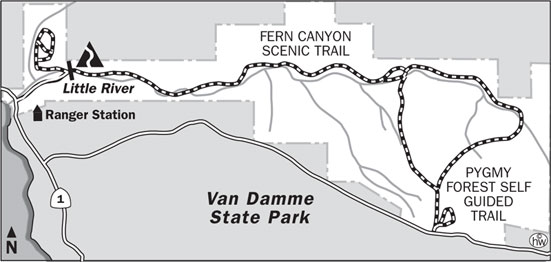 Fern Canyon Trail Map
