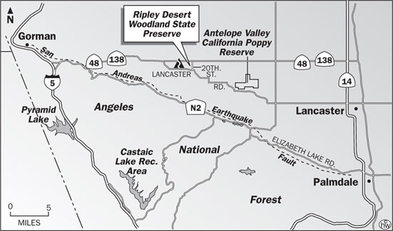 Ripley Nature Trail Map