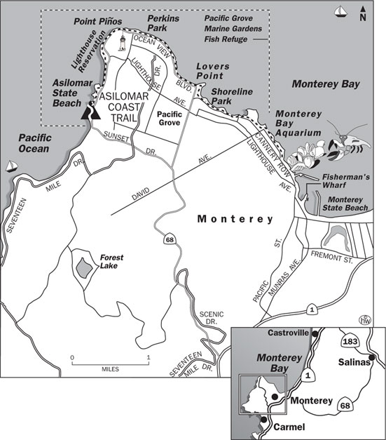 Asilomar Coast Trail Map