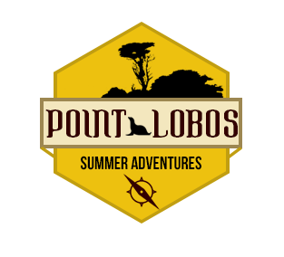 Summer Adventure Logo