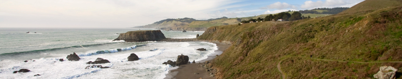 Goat Rock at Sonoma Coast