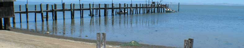 View of dock and beach area at China Camp SP