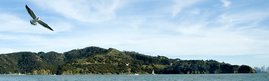 Angel Island SP