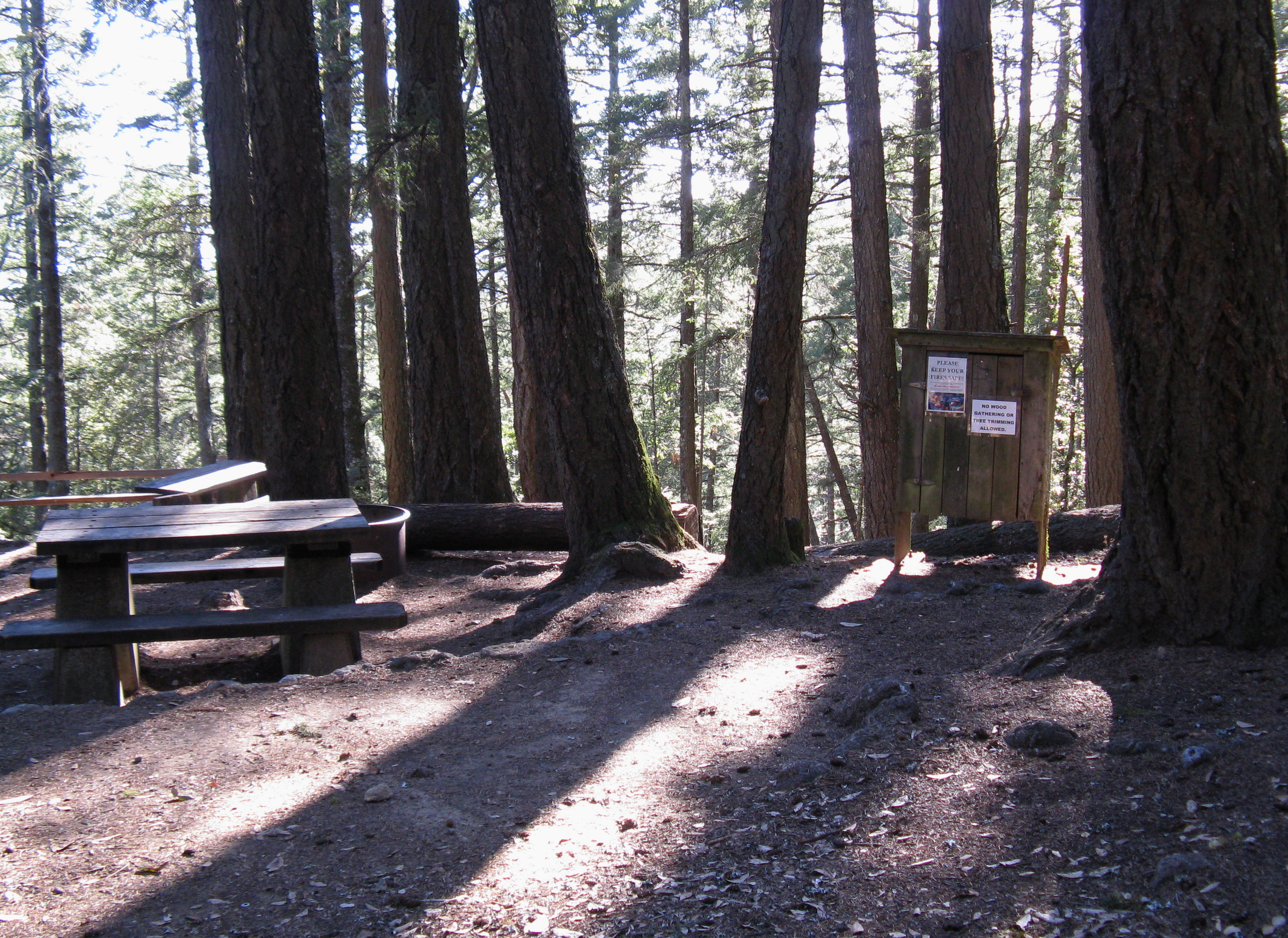 Pantoll Campground Site 10