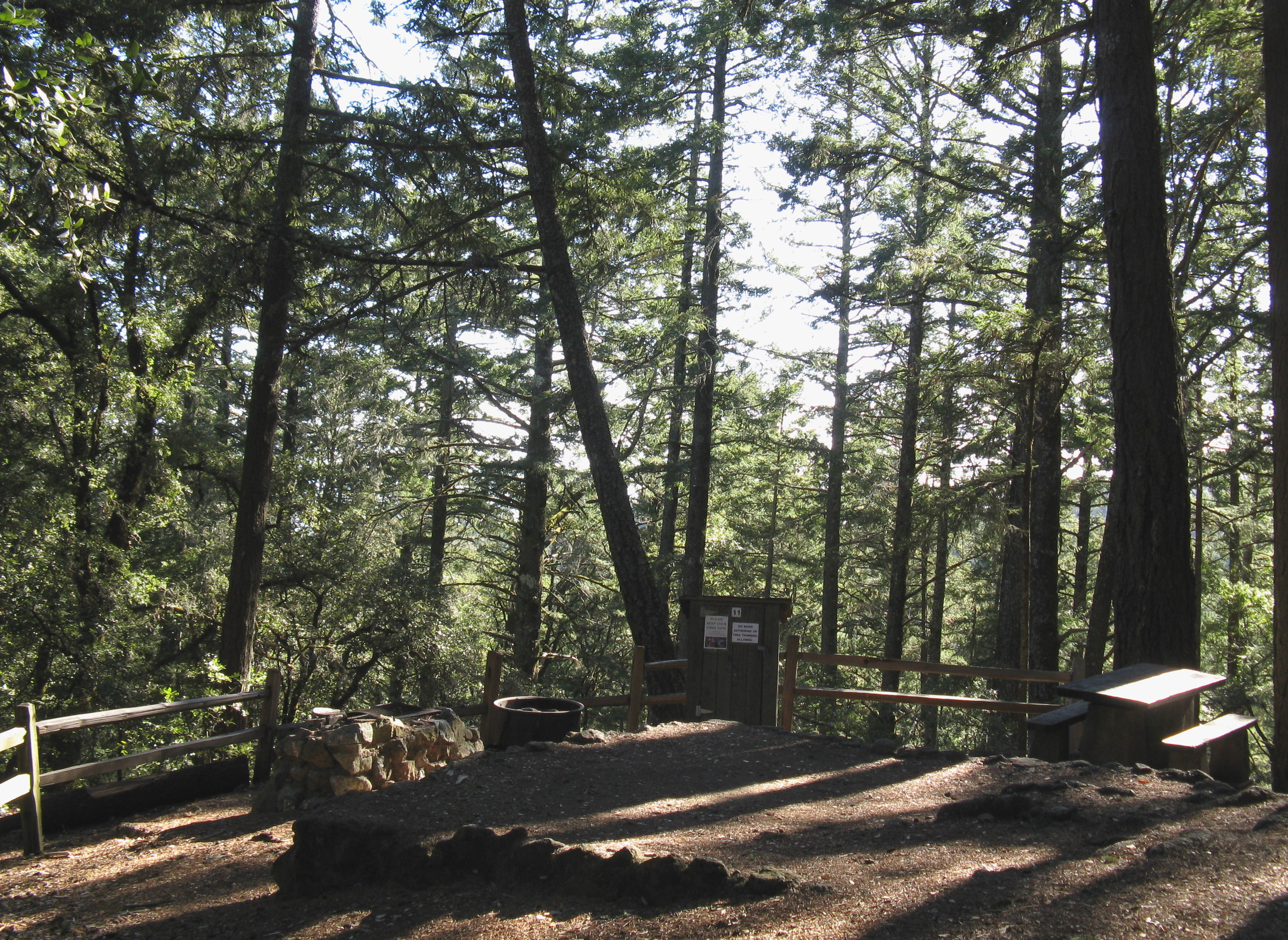 Pantoll Campground Site 11