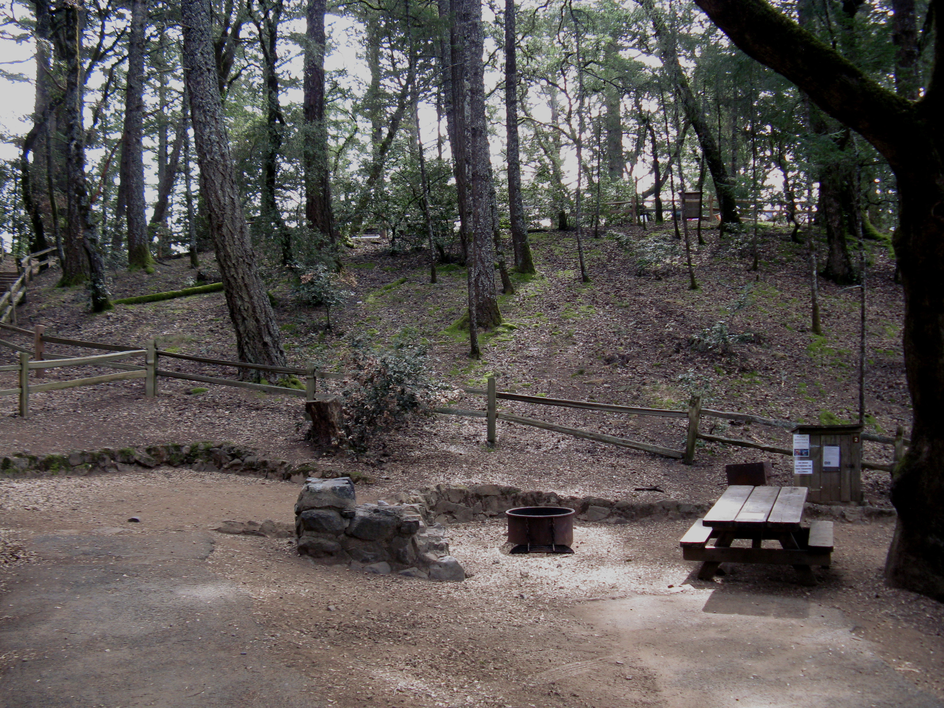 Pantoll Campground Site 2