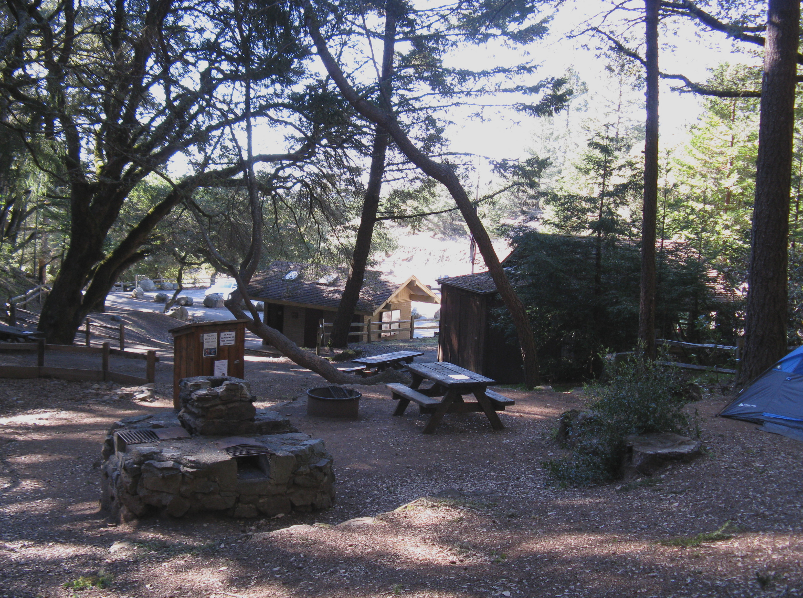 Pantoll Campground Site 3