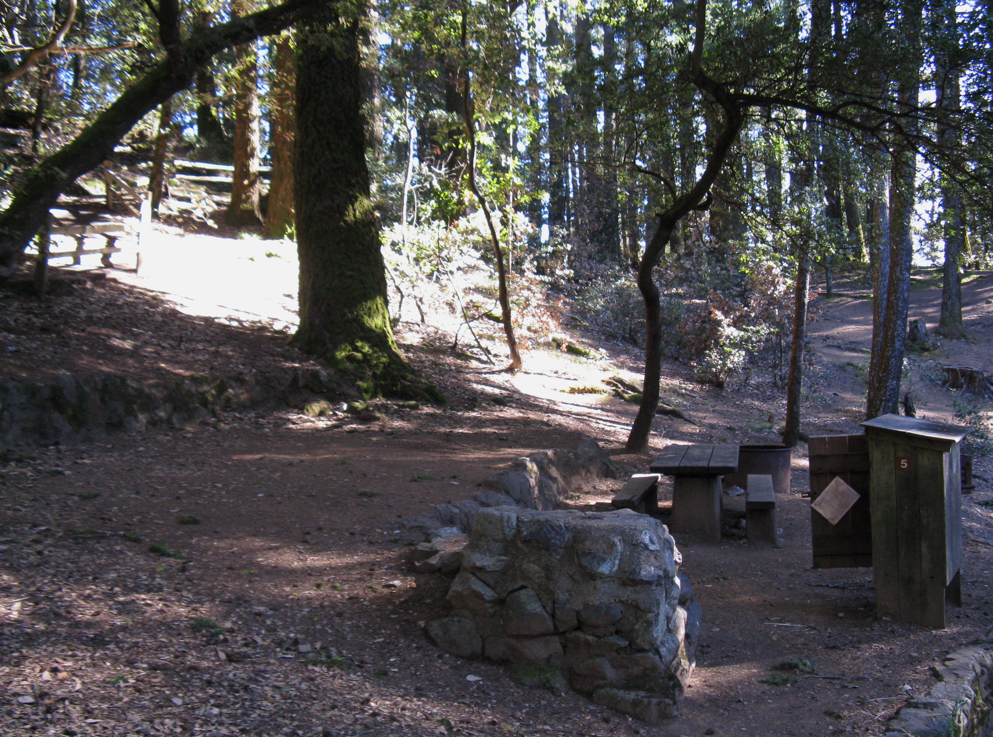 Pantoll Campground Site 5