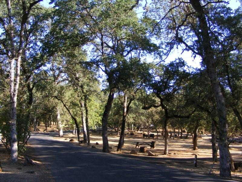 Upper Bayview Campgrounds