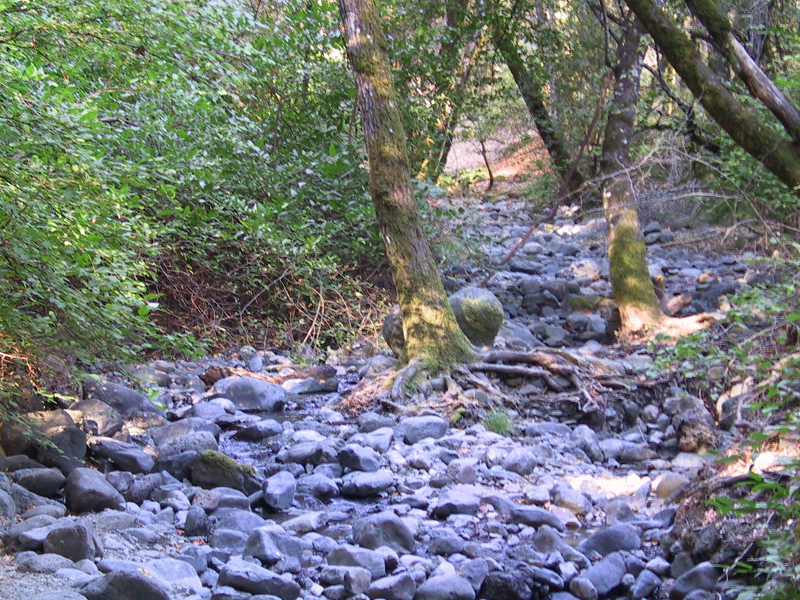 Ritchey Creek image