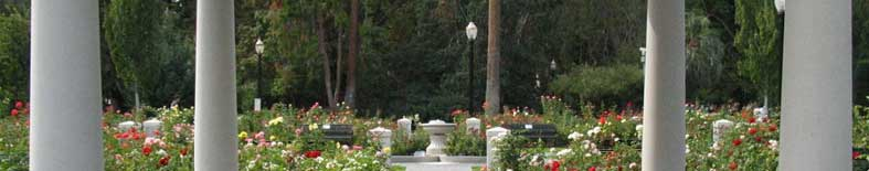 View of rose garden at the California State Capitol Museum