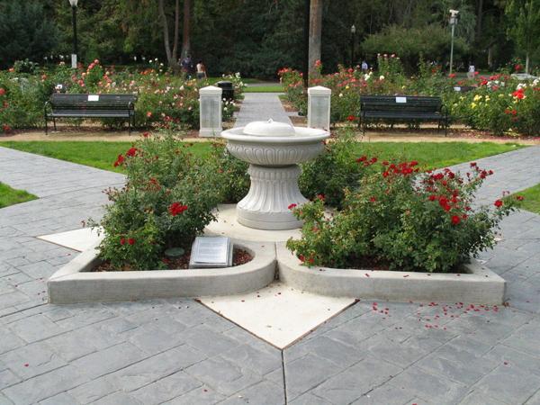 Capitol park rose garden.