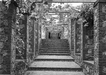 California State Parks - Photographic Archives - Empire Mine SHP - Bourn Gardens