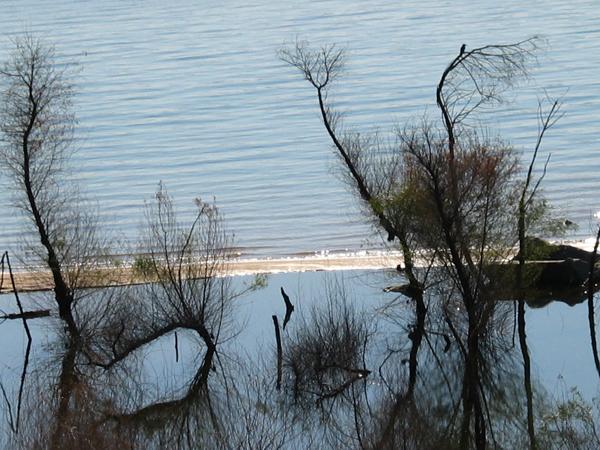 Beals Point, Folsom Lake.