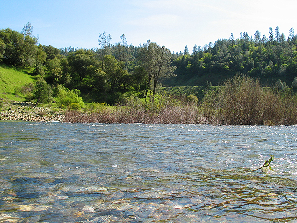 American River with Hills in the background.