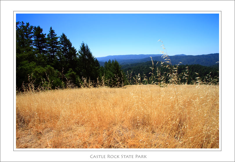 CastleRockSP1 Tom Stienstras Top 5 Bay Area Mountain Tops