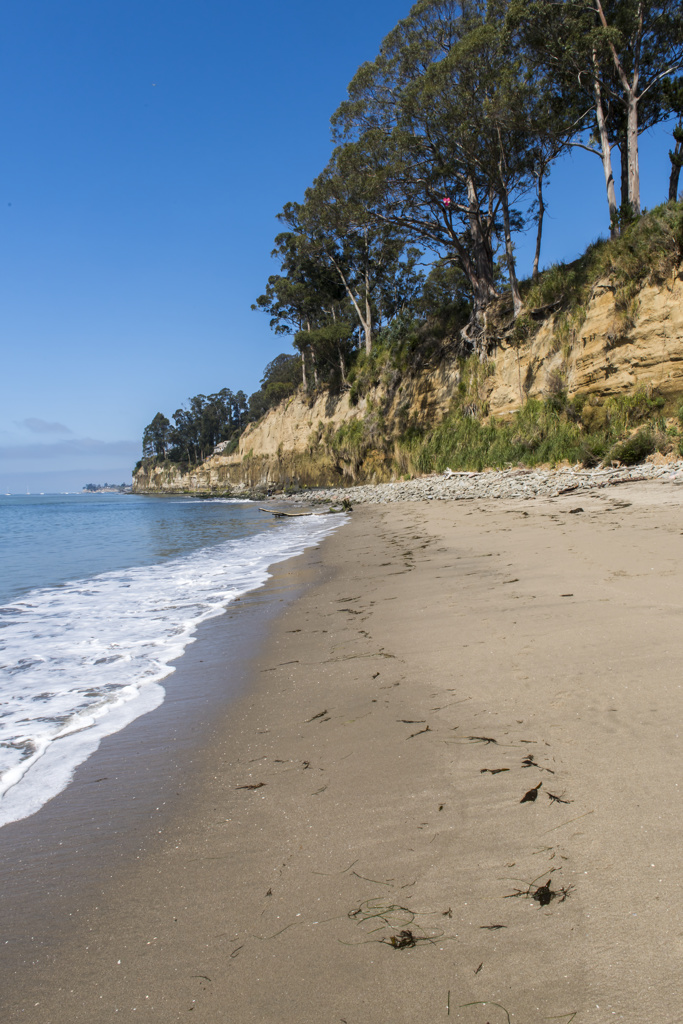 Seacliff State Beach Picnic Reservations