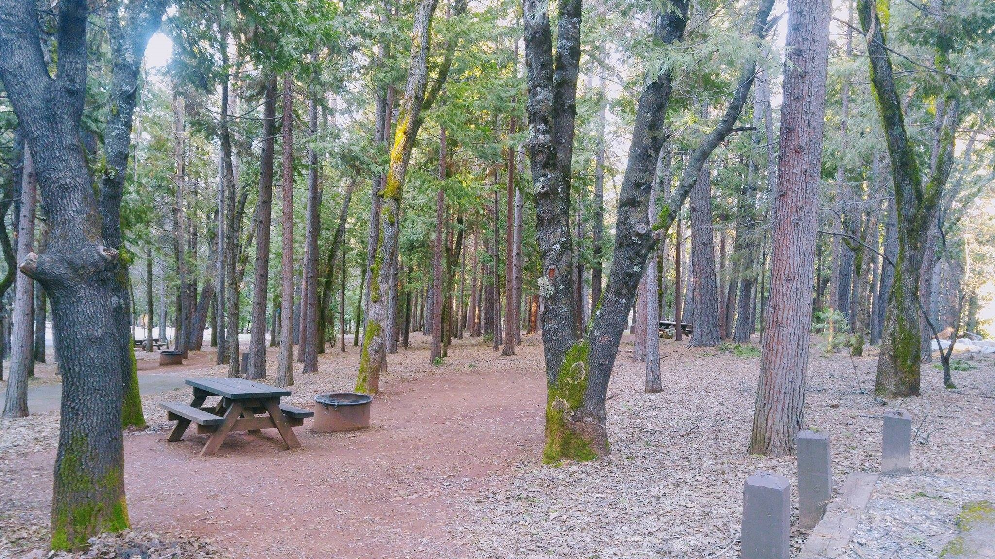 Campground Image