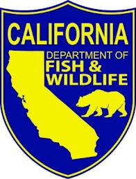 Dept. Fish and Wildlife Seal