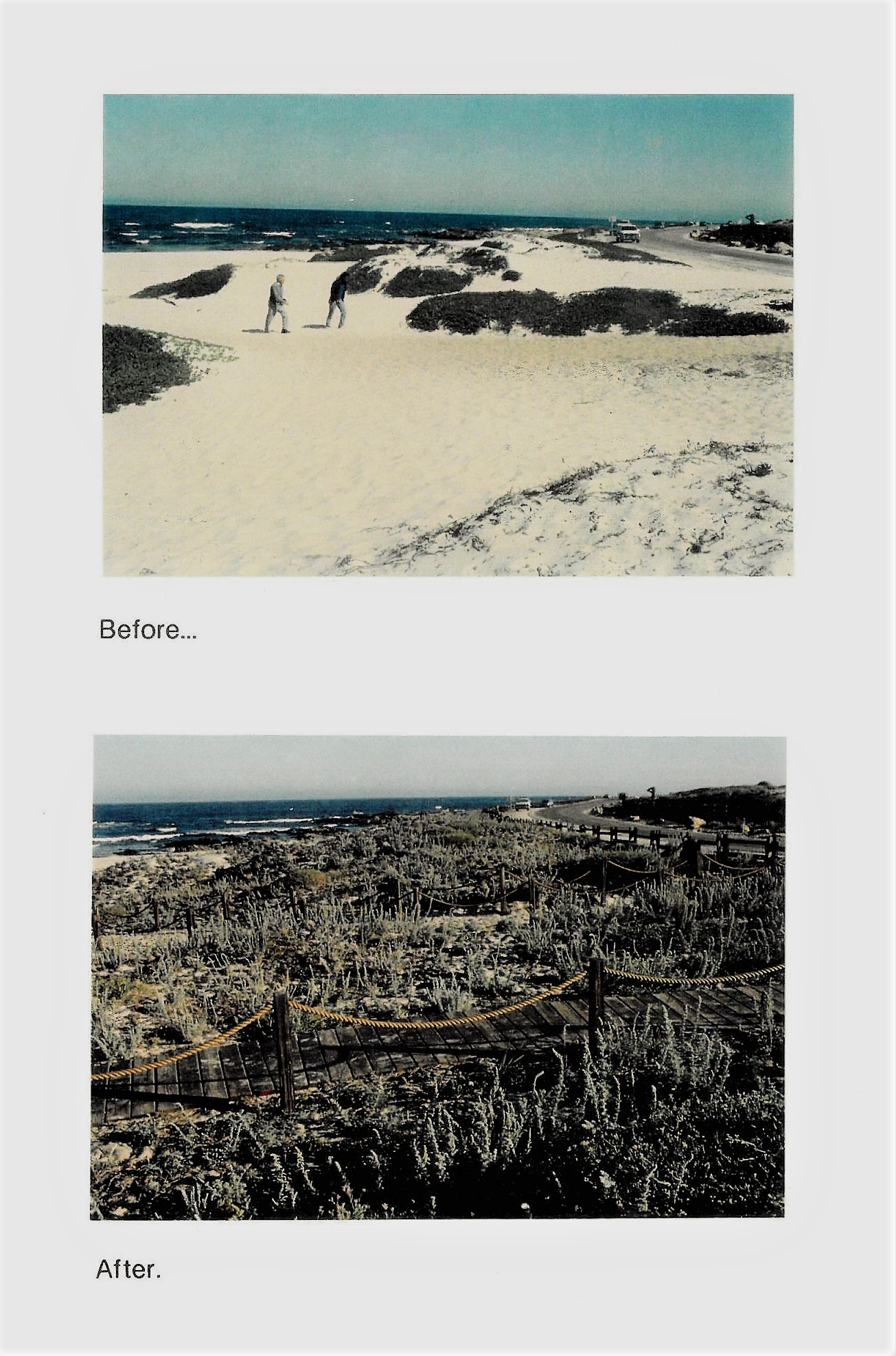 Before-After Beach Restoration Image
