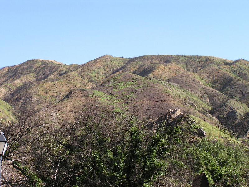 Placerita Canyon SP