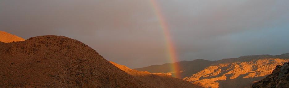 39 tis the season to visit anza borrego desert state park
