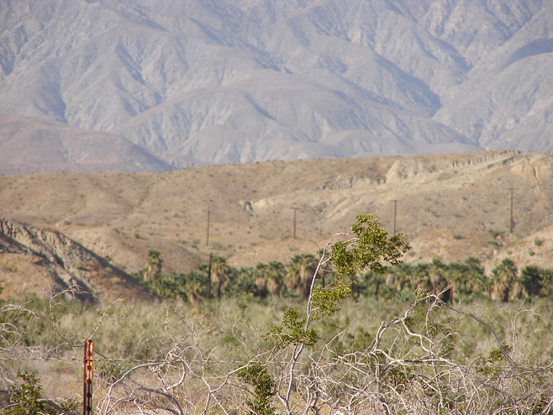 Indio Hills Palms State Property (Reserve)
