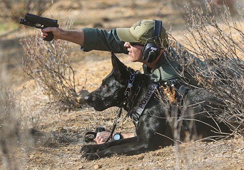 State Parks K-9 Training image