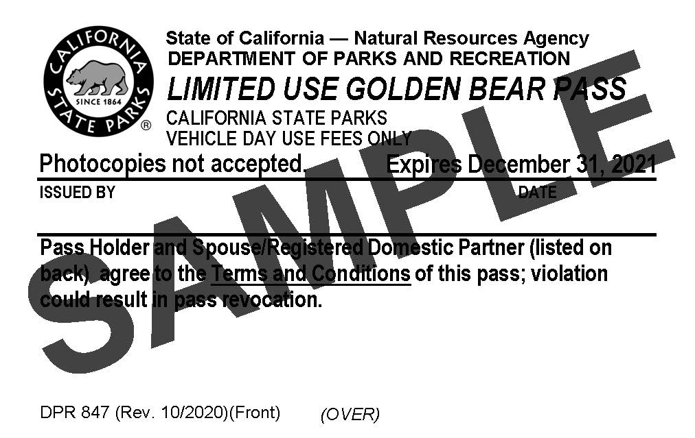 Limited Use Golden Bear