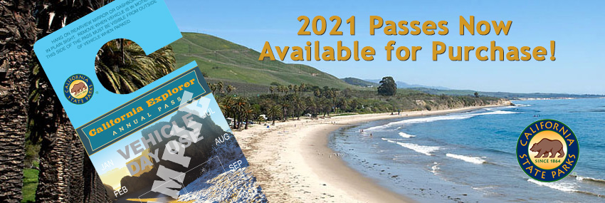 2020 Annual Pass Banner