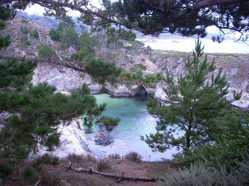 Point Lobos SNR by DSchaechtele
